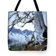 Dead Spruce In Old Forest Fire, Nabob Tote Bag