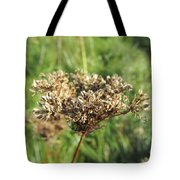 Dead Thistle Tote Bag