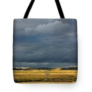 Dead Tree At Dusk With Storm Clouds Tote Bag