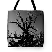 Dead Tree II Tote Bag