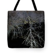 Dead Tree Reflects In Black Water Tote Bag