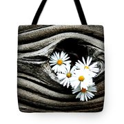 Dead Wood And Asters Tote Bag