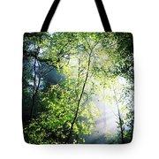 Deciduous Wood, Killarney National Tote Bag