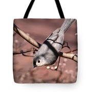 Decked Out - Tufted Titmouse Tote Bag
