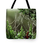 Decorated Bush Quogue Wildlife Preserve Tote Bag