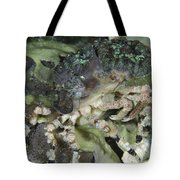 Decorator Crab, Indonesia Tote Bag