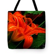 Deep Orange Day Lily Tote Bag