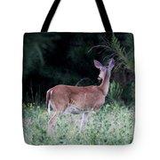 Deer - Doe - I Heard Something Tote Bag