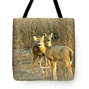 Deer Duo Tote Bag
