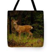 Deer Gazing  Tote Bag