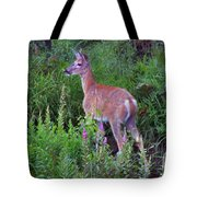 Deer In The Marsh Tote Bag
