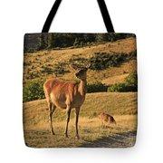Deer On Mountain 2 Tote Bag