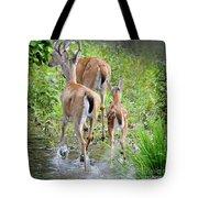 Deer Running In Stream Tote Bag