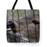 Deer Will Work For Crackers Tote Bag