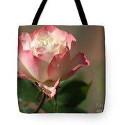 Delany Sister Rose Tote Bag