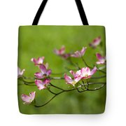 Delicate Pink Dogwood Blossoms Tote Bag