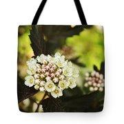 Delicate Spring Bloom Tote Bag