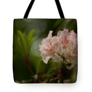 Delicately Peach Tote Bag