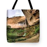 Demon Canyon Tote Bag
