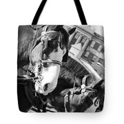 Denver Stock Show Tote Bag