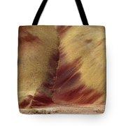 Desert Brushstrokes Tote Bag