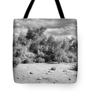 Desert Cloud Bw Palm Springs Tote Bag