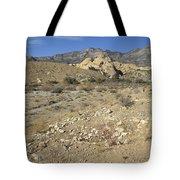 Desert Washout Tote Bag