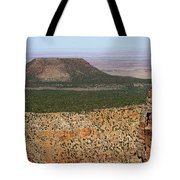 Desert Watch Tower View Tote Bag