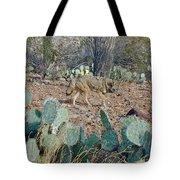 Desert Wolf Tote Bag