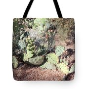 Desert's Collection Of Dried Flowers 3 Tote Bag