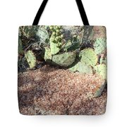Desert's Collection Of Dried Flowers1 Tote Bag