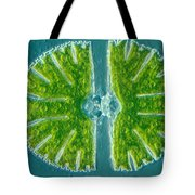 Desmid Algae Tote Bag