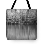 Desolate Splendor Bw Tote Bag