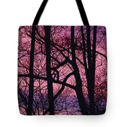 Detail Of Bare Trees Silhouetted Tote Bag