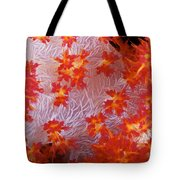 Detailed View Of Soft Coral Revealing Tote Bag