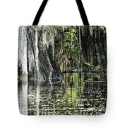 Details Of A Florida River Tote Bag