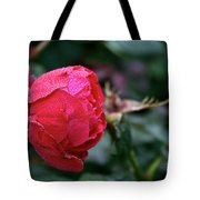 Dew Drenched Rose Tote Bag