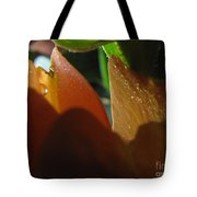 Dew Light And Shadows Tote Bag