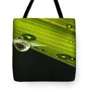 Dew On Leaf, Germany Tote Bag