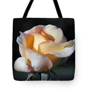 Dew On Rose Tote Bag