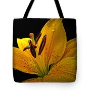 Dew On The Daylily Tote Bag