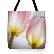 Dew On Tulips Tote Bag