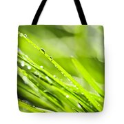 Dewy Green Grass  Tote Bag
