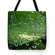 Diamond Encased Tote Bag