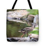 Diary Of A Mad Brown Duck Tote Bag