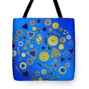Diatom Arrangement Tote Bag