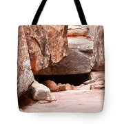 Did Anyone Live Here Tote Bag by Bob and Nancy Kendrick