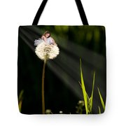 Digital Art Essay I Tote Bag