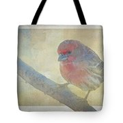 Digitally Painted Finch With Texture II Tote Bag