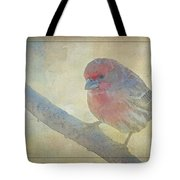Digitally Painted Finch With Texture IIi Tote Bag